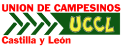 UCCL